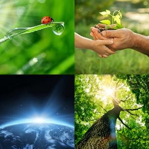environnement sauver la planète